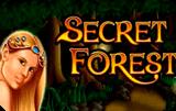 Игровой аппарат Secret Forest